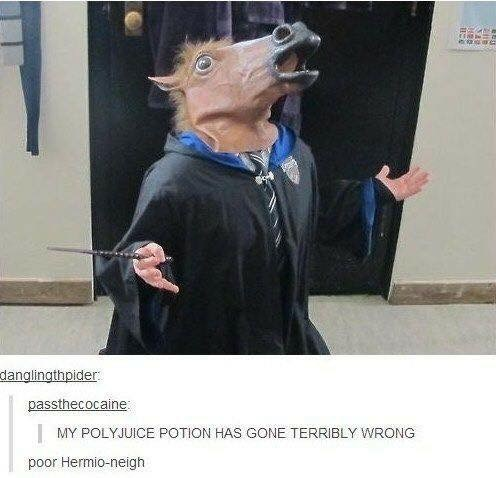 Photography - danglingthpider: passthecocaine | MY POLYJUICE POTION HAS GONE TERRIBLY WRONG poor Hermio-neigh