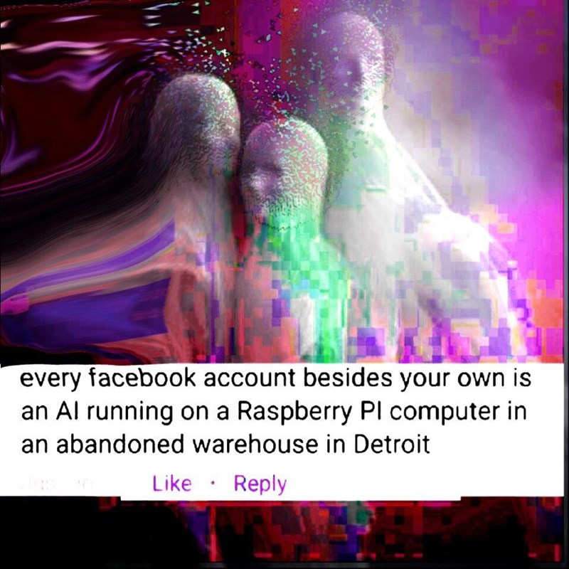 Text - every facebook account besides your own is an Al running on a Raspberry PI computer in an abandoned warehouse in Detroit Like Reply