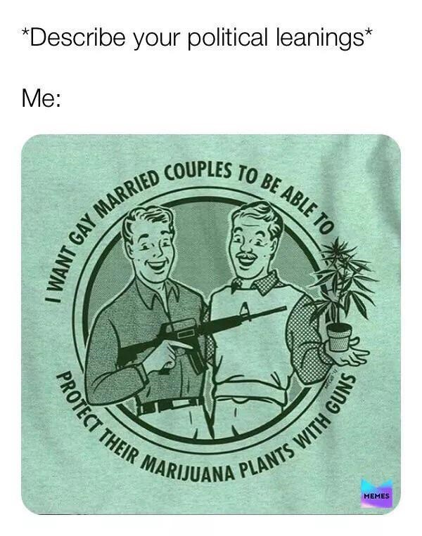 Illustration - *Describe your political leanings* Me: GAY MARRIED COUPLES TO BE ABLE TO THEIR MARIJUANA ANTS MEMES PROTECT WITH GUNS