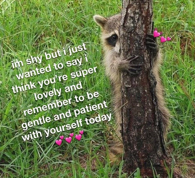Adaptation - im shy but i just wanted to say i think you're super lovely and remember to be gentle and patient with yourself today