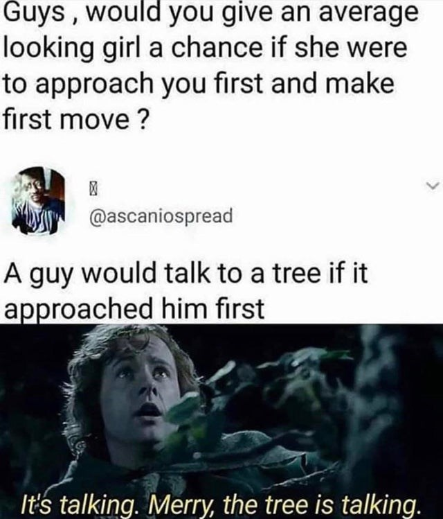 Text - Guys, would you give an average looking girl a chance if she were to approach you first and make first move ? @ascaniospread A guy would talk to a tree if it approached him first It's talking. Merry, the tree is talking.