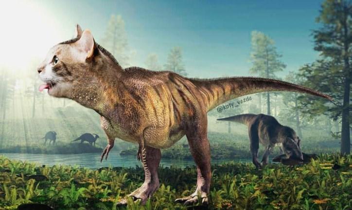 Dinosaur - @koty vezde
