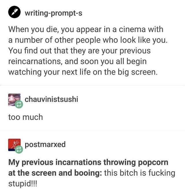 Text - writing-prompt-s When you die, you appear in a cinema with a number of other people who look like you. You find out that they are your previous reincarnations, and soon you all begin watching your next life on the big screen. chauvinistsushi too much postmarxed My previous incarnations throwing popcorn at the screen and booing: this bitch is fucking stupid!!