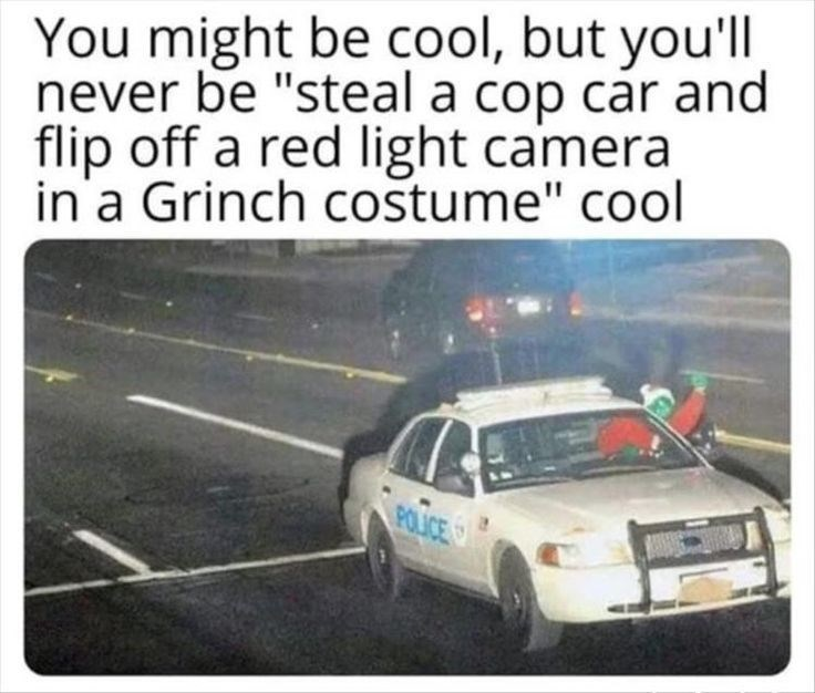 """Motor vehicle - You might be cool, but you'll never be """"steal a cop car and flip off a red light camera in a Grinch costume"""" cool POLICE"""