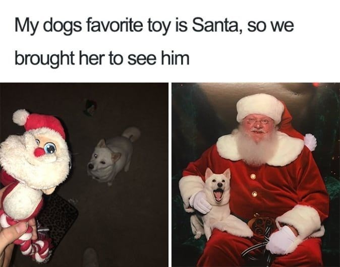 Santa claus - My dogs favorite toy is Santa, so we brought her to see him