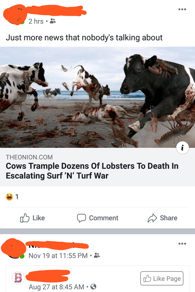 Bovine - 2 hrs • 8 Just more news that nobody's talking about THEONION.COM Cows Trample Dozens Of Lobsters To Death In Escalating Surf 'N' Turf War O Like Comment Share Nov 19 at 11:55 PM • 3 O Like Page Aug 27 at 8:45 AM • ☺