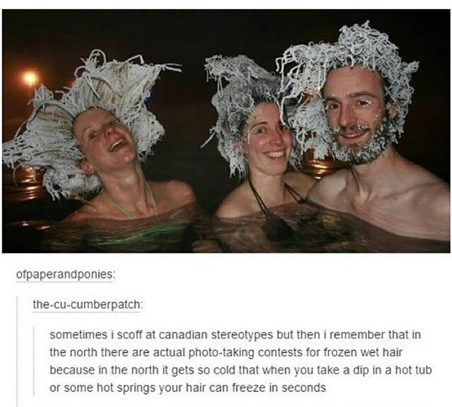 Human - ofpaperandponies: the-cu-cumberpatch: sometimes i scoff at canadian stereotypes but then i remember that in the north there are actual photo-taking contests for frozen wet hair because in the north it gets so cold that when you take a dip in a hot tub or some hot springs your hair can freeze in seconds