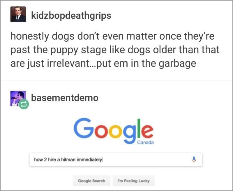 Text - kidzbopdeathgrips honestly dogs don't even matter once they're past the puppy stage like dogs older than that are just irrelevant.put em in the garbage basementdemo Google Canada how 2 hire a hitman immediately Google Search I'm Feeling Lucky