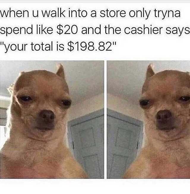 """Mammal - when u walk into a store only tryna spend like $20 and the cashier says """"your total is $198.82"""""""