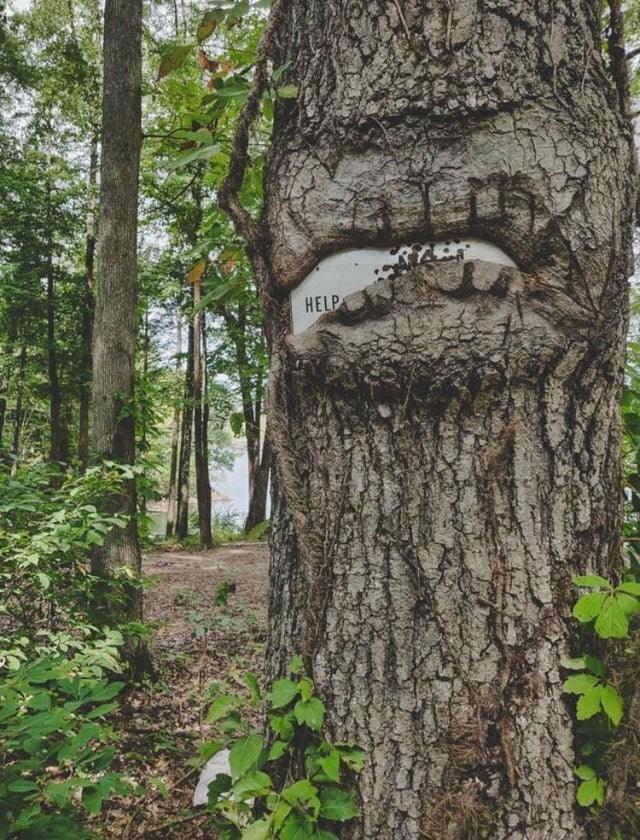 Tree - HELP
