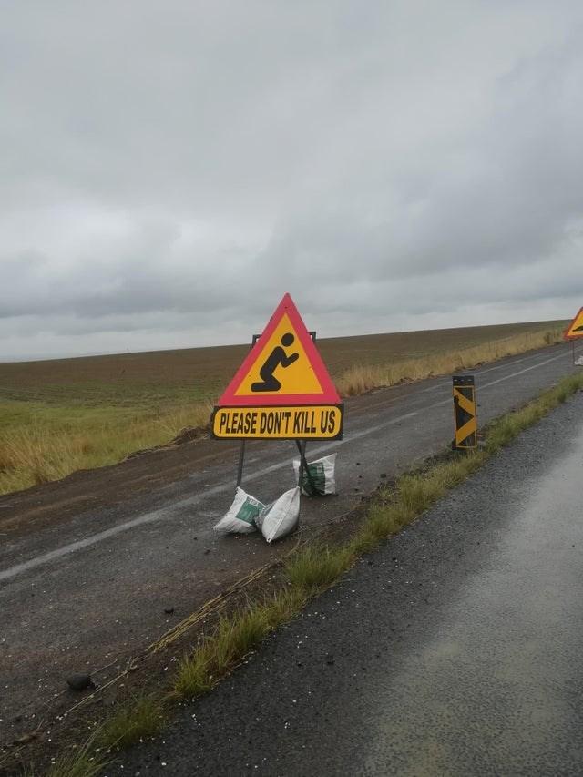 Road - PLEASE DONT KILL US