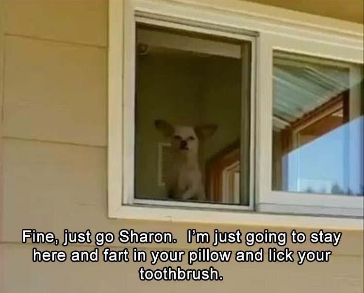 Property - Fine, just go Sharon. I'm just going to stay here and fart in your pillow and lick your toothbrush.