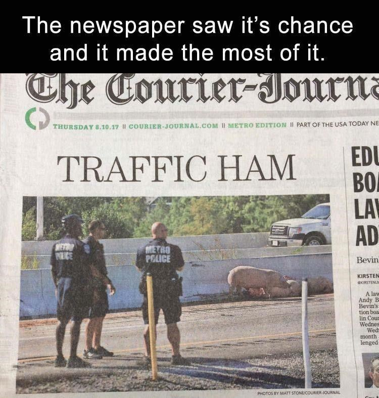 Text - The newspaper saw it's chance and it made the most of it. Che Courier-Journa THURSDAY 8.10.17 || COURIER-JOURNAL.COM Il METRO EDITION II PART OF THE USA TODAY NE EDU BO LA AD TRAFFIC HAM WETR NEGE METRO POLICE Bevin KIRSTEN OKIRSTENLI A law Andy B Bevin's tion boa lin Cour Wednes Wed month lenged PHOTOS BY MATT STONECOURIER-JOURNAL