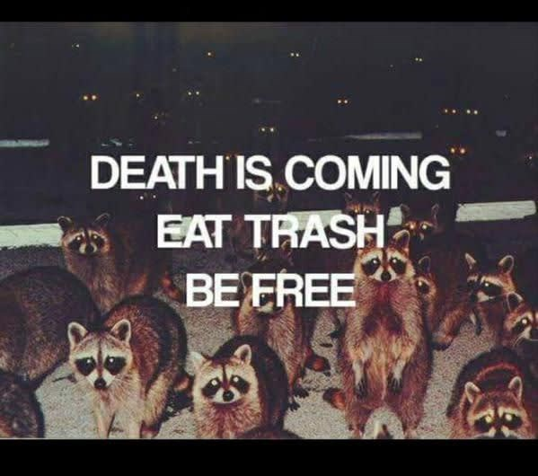 Text - DEATH IS.COMING EAT TRASH BE FREE