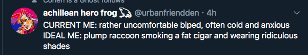 Text - CONemIS a VIIUst TuiIOWS @urbanfriendden · 4h achillean hero frog CURRENT ME: rather uncomfortable biped, often cold and anxious IDEAL ME: plump raccoon smoking a fat cigar and wearing ridiculous shades