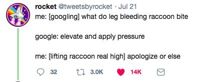Text - rocket @tweetsbyrocket · Jul 21 me: [googling] what do leg bleeding raccoon bite google: elevate and apply pressure me: [lifting raccoon real high] apologize or else 1 3.0K 32 14K