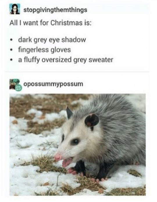 Vertebrate - A stopgivingthemthings All I want for Christmas is: • dark grey eye shadow • fingerless gloves • a fluffy oversized grey sweater opossummypossum