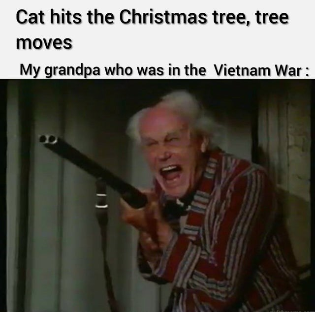 Musical instrument - Cat hits the Christmas tree, tree moves My grandpa who was in the Vietnam War: 133