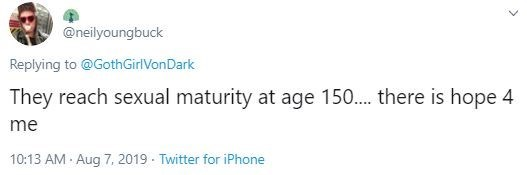 Text - @neilyoungbuck Replying to @GothGirlVonDark They reach sexual maturity at age 150.. there is hope 4 me 10:13 AM Aug 7, 2019 - Twitter for iPhone