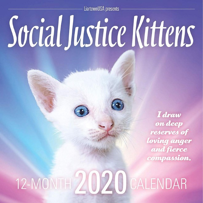 Cat - LiartownUSA presents Social Justice Kittens I draw on deep reserves of loving anger and fierce compassion. 2020 12-MONT CALENDAR