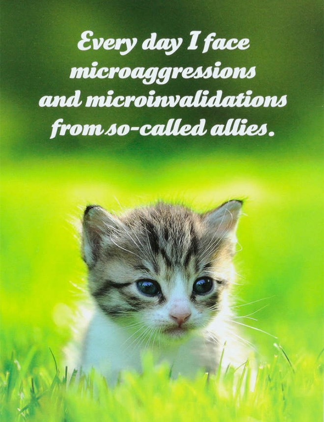 Cat - Every day I face microaggressions and microinvalidations from so-called allies.