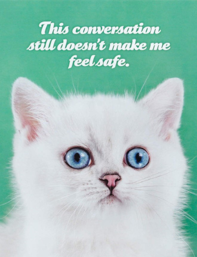 Cat - This conversation still doesn't make me feel safe.