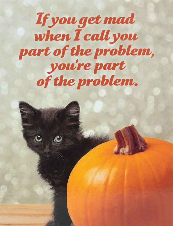 Black cat - If you get mad when I call you part of the problem, you're part of the problem.