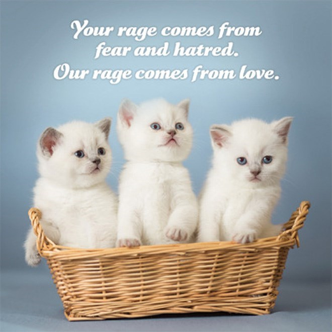 Cat - Your rage comes from fear and hatred. Our rage comes from love.