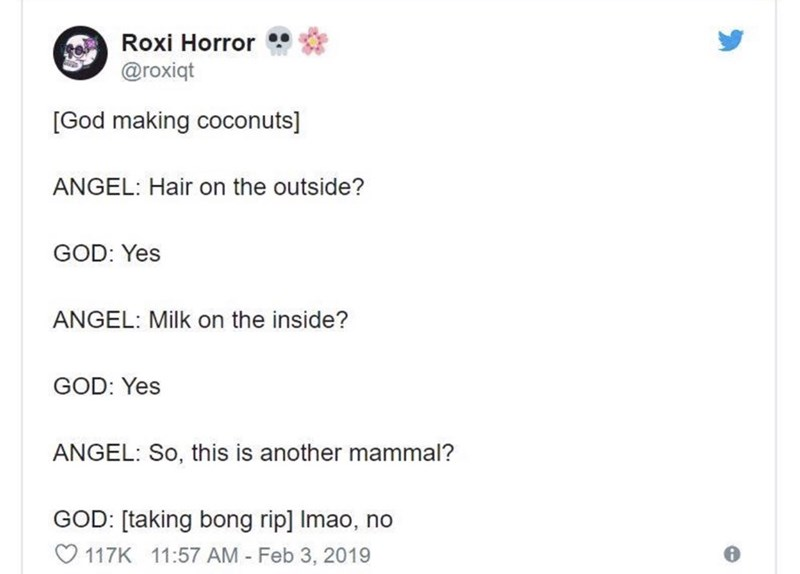 Text - Roxi Horror @roxiqt [God making coconuts] ANGEL: Hair on the outside? GOD: Yes ANGEL: Milk on the inside? GOD: Yes ANGEL: So, this is another mammal? GOD: [taking bong rip] Imao, no O 117K 11:57 AM - Feb 3, 2019