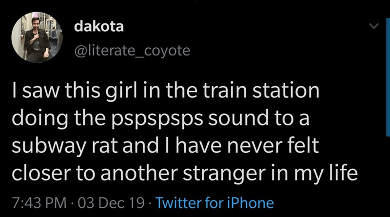 Text - dakota @literate_coyote I saw this girl in the train station doing the pspspsps sound to a subway rat and I have never felt closer to another stranger in my life 7:43 PM · 03 Dec 19 · Twitter for iPhone