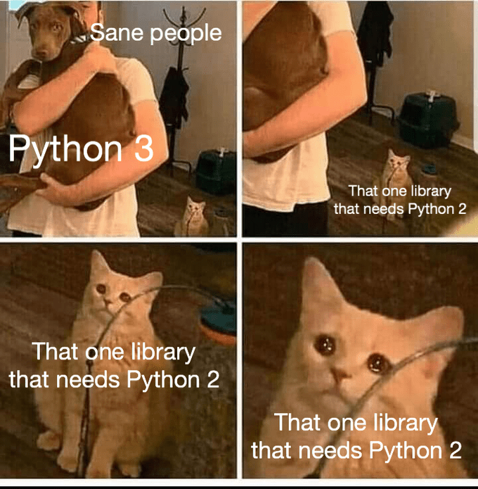 Cat - Sane people Python 3 That one library that needs Python 2 That one library that needs Python 2 That one library that needs Python 2