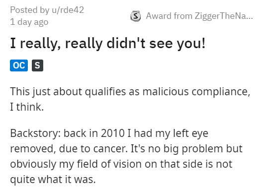 Text - Posted by u/rde42 1 day ago Award from ZiggerTheNa... I really, really didn't see you! oc s This just about qualifies as malicious compliance, I think. Backstory: back in 2010 I had my left eye removed, due to cancer. It's no big problem but obviously my field of vision on that side is not quite what it was.
