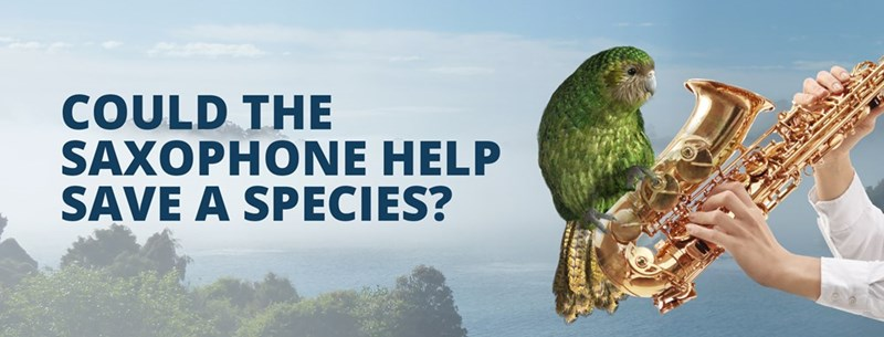 Bird - COULD THE SAXOPHONE HELP SAVE A SPECIES?