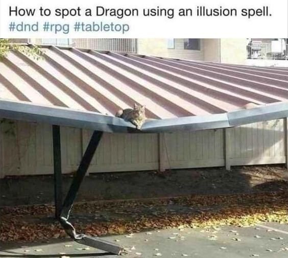 Roof - How to spot a Dragon using an illusion spell. #dnd #rpg #tabletop