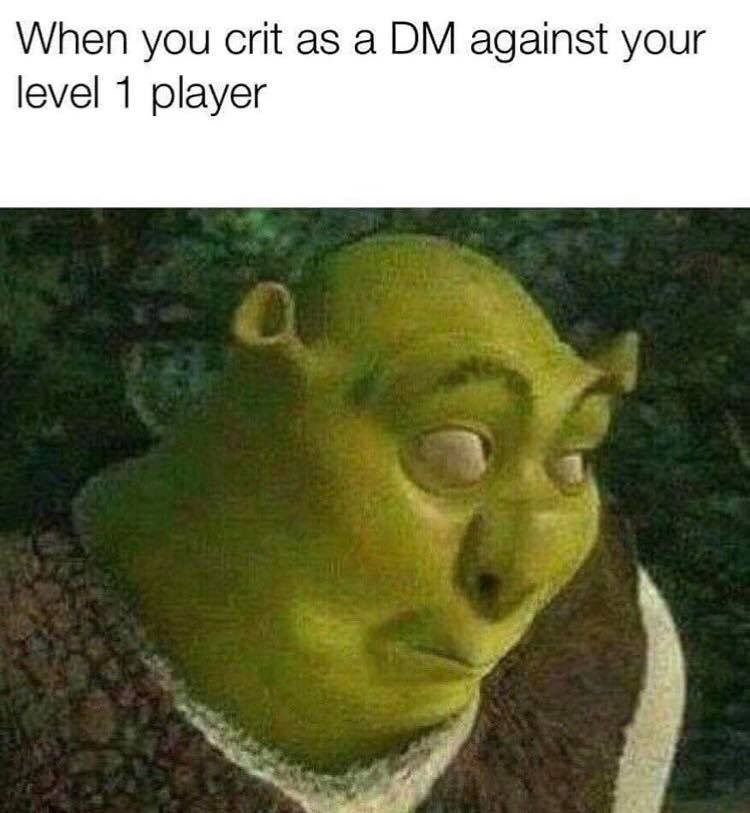Head - When you crit as a DM against your level 1 player