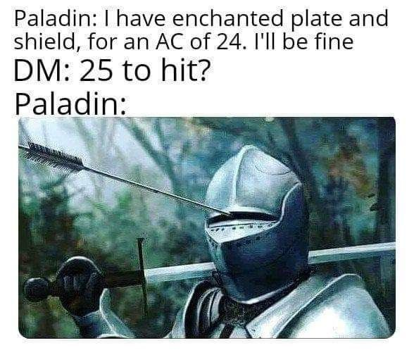 Fictional character - Paladin: I have enchanted plate and shield, for an AC of 24. I'll be fine DM: 25 to hit? Paladin:
