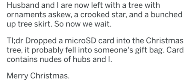 Text - Husband and I are now left with a tree with ornaments askew, a crooked star, and a bunched up tree skirt. So now we wait. TI;dr Dropped a microSD card into the Christmas tree, it probably fell into someone's gift bag. Card contains nudes of hubs and I. Merry Christmas.