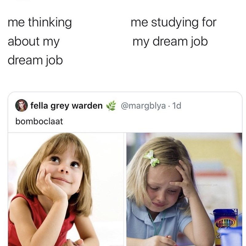 Text - me thinking me studying for about my my dream job dream job O fella grey warden @margblya 1d bomboclaat