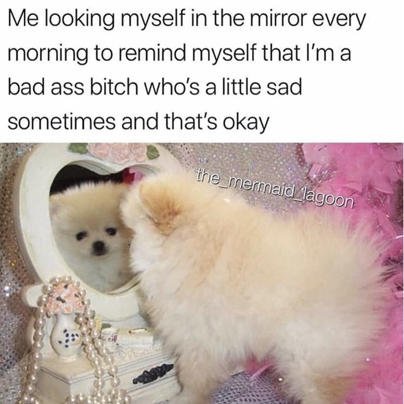 Vertebrate - Me looking myself in the mirror every morning to remind myself that l'm a bad ass bitch who's a little sad sometimes and that's okay the mermaid lagoon