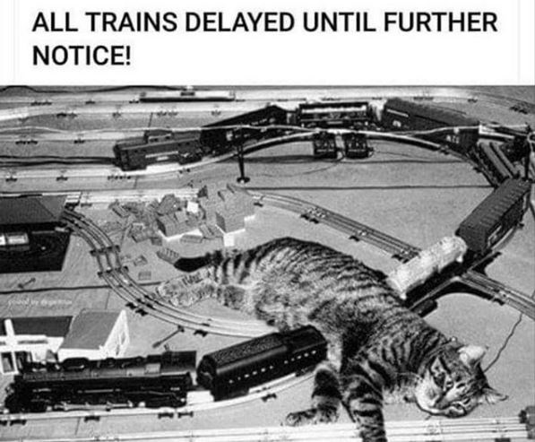 Vehicle - ALL TRAINS DELAYED UNTIL FURTHER NOTICE!