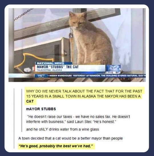 "Cat - NATIONAL NEWS MAYOR ""STUBBS"" THE CAT TALKIETA ALASKA 0GDEN WAREOUsE TETERDAY TENOON THE BULDG STONED NATURAL SAST WHY DO WE NEVER TALK ABOUT THE FACT THAT FOR THE PAST 15 YEARS IN A SMALL TOWN IN ALASKA THE MAYOR HAS BEEN A CAT MAYOR STUBBS ""He doesn't raise our taxes - we have no sales tax. He doesn't interfere with business."" said Lauri Stec ""He's honest."" and he ONLY drinks water from a wine glass A town decided that a cat would be a better mayor than people ""He's good, probably the bes"