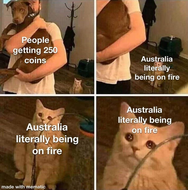 Facial expression - People getting 250 coins Australia literally being on fire Australia literally being on fire Australia literally being on fire made with mematic