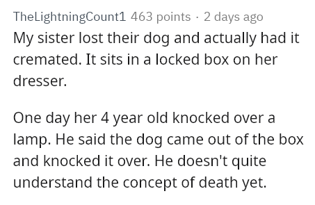 Text - TheLightningCount1 463 points · 2 days ago My sister lost their dog and actually had it cremated. It sits in a locked box on her dresser. One day her 4 year old knocked over a lamp. He said the dog came out of the box and knocked it over. He doesn't quite understand the concept of death yet.