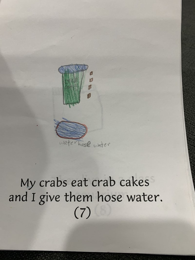 Text - waterhese water My crabs eat crab cakes and I give them hose water. (7)