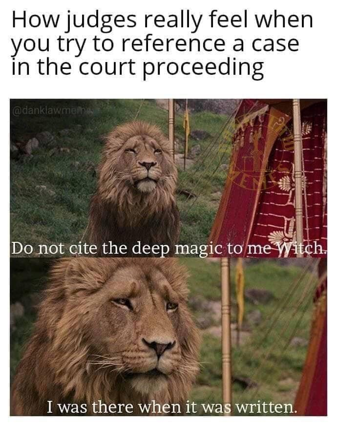Lion - How judges really feel when you try to reference a case in the court proceeding @danklawmemA Do not cite the deep magic tơ me Witch. I was there when it was written.