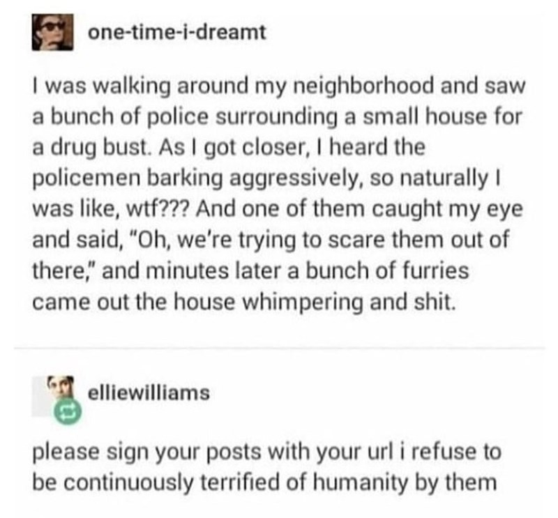 """Text - one-time-i-dreamt I was walking around my neighborhood and saw a bunch of police surrounding a small house for a drug bust. As I got closer, I heard the policemen barking aggressively, so naturally I was like, wtf??? And one of them caught my eye and said, """"Oh, we're trying to scare them out of there,"""" and minutes later a bunch of furries came out the house whimpering and shit. elliewilliams please sign your posts with your url i refuse to be continuously terrified of humanity by them"""