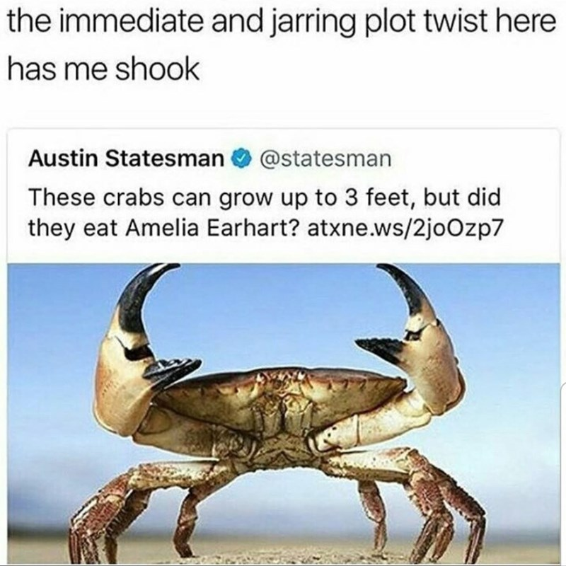 Crab - the immediate and jarring plot twist here has me shook Austin Statesman O @statesman These crabs can grow up to 3 feet, but did they eat Amelia Earhart? atxne.ws/2joOzp7