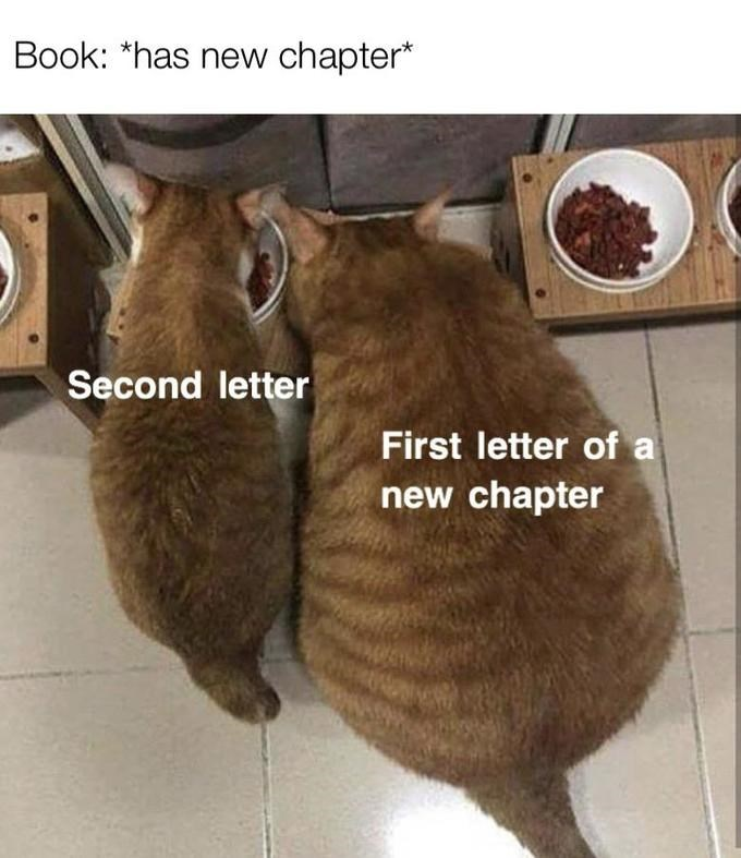 Fur - Book: *has new chapter* Second letter First letter of a new chapter