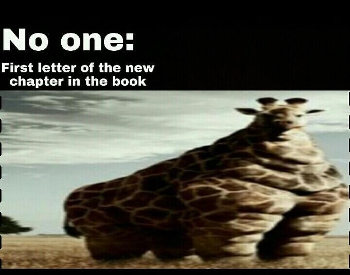 Adaptation - No one: First letter of the new chapter in the book
