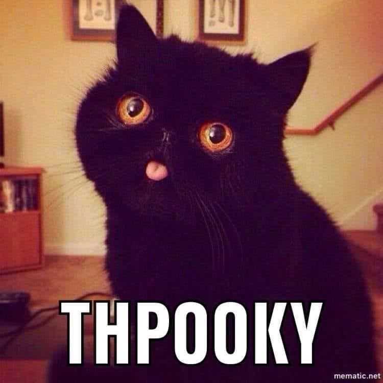 Cat - THPOOKY mematic.net